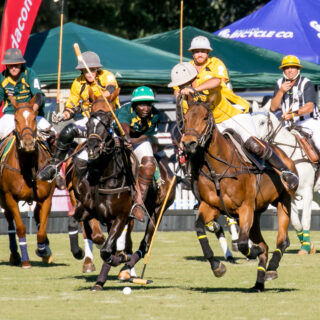 Polo in the Midlands