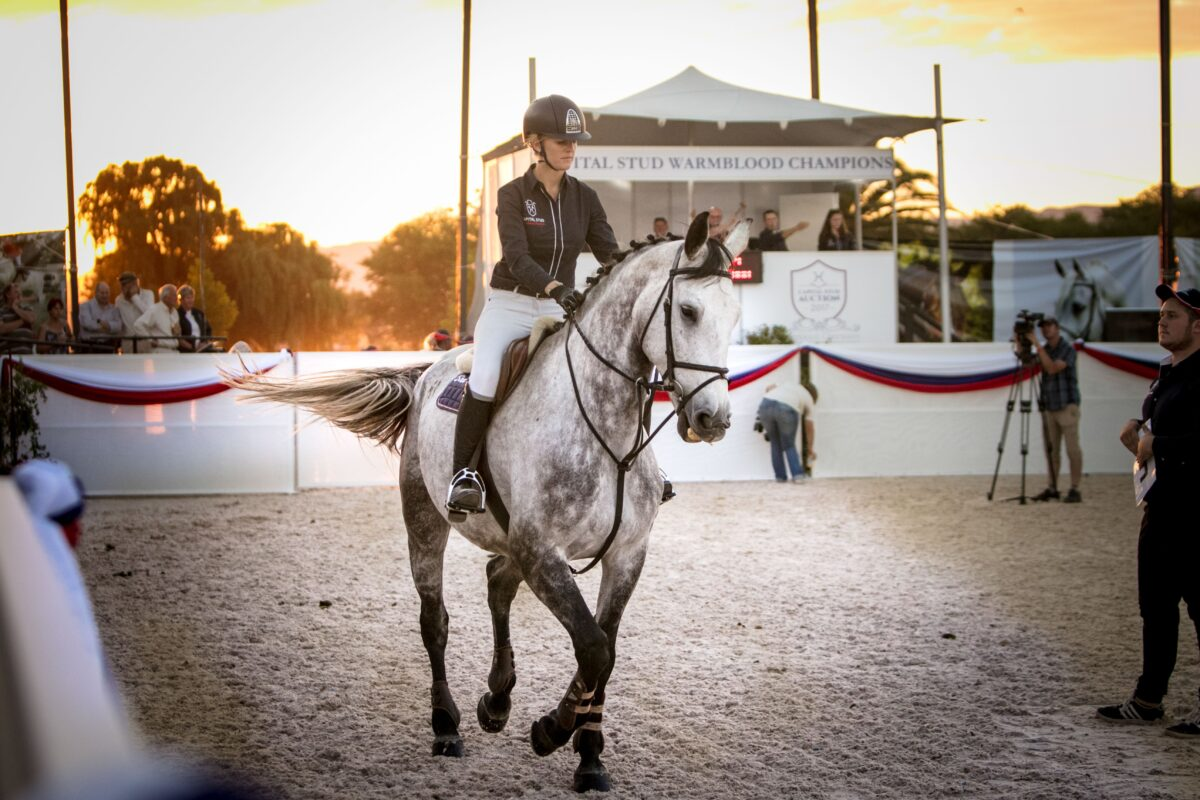 A New Era for Summerhill Equestrian